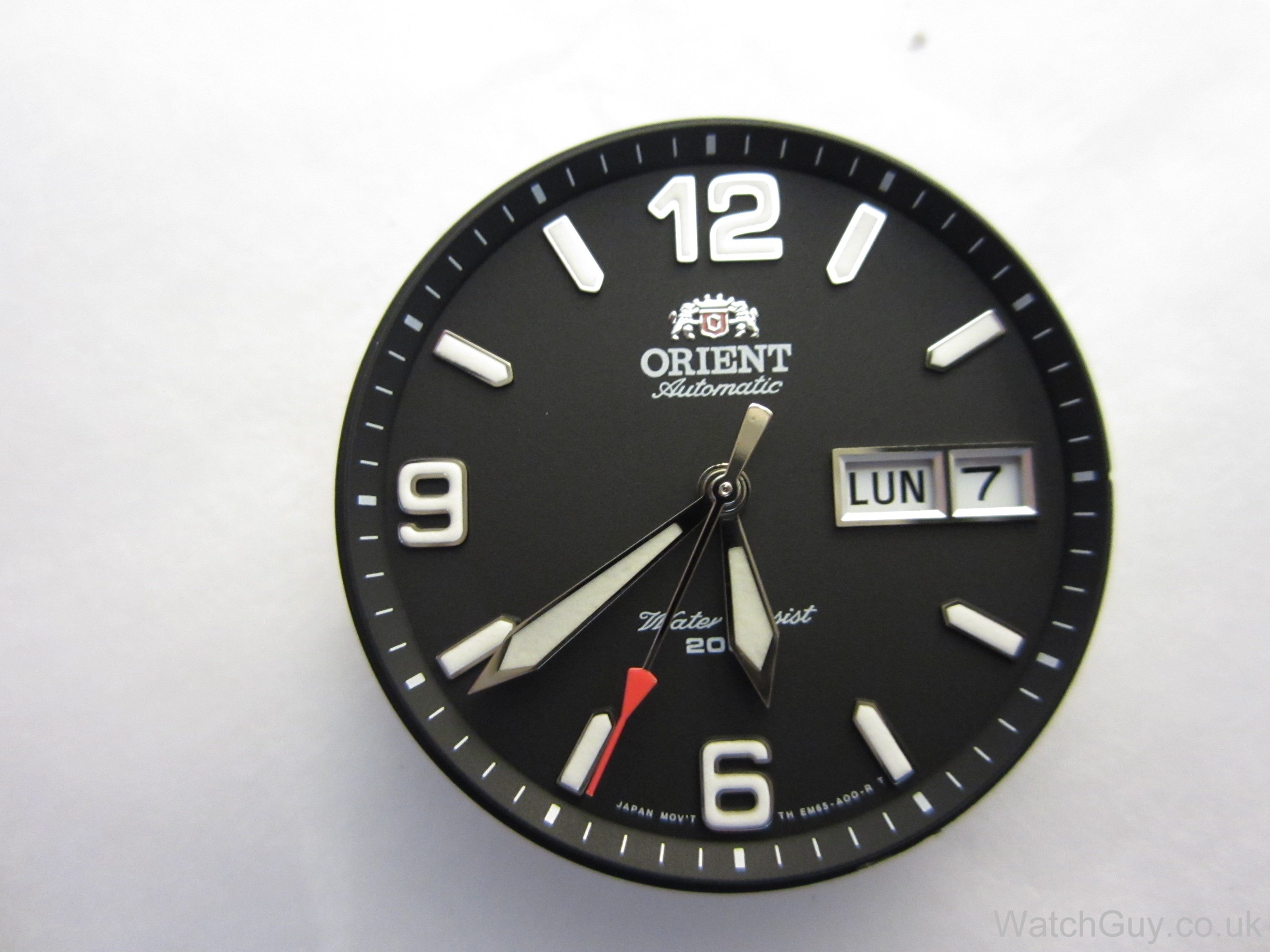 Service orient calibre 46943 watch guy img9644 amipublicfo Images